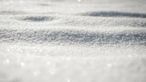 Poudreuse 2 - Labo du skieur